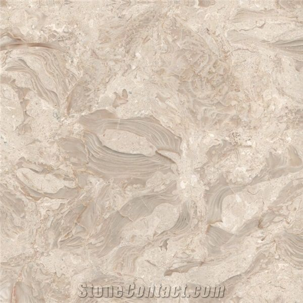 Buy Shells Reef Beige Limestone Slabs United States