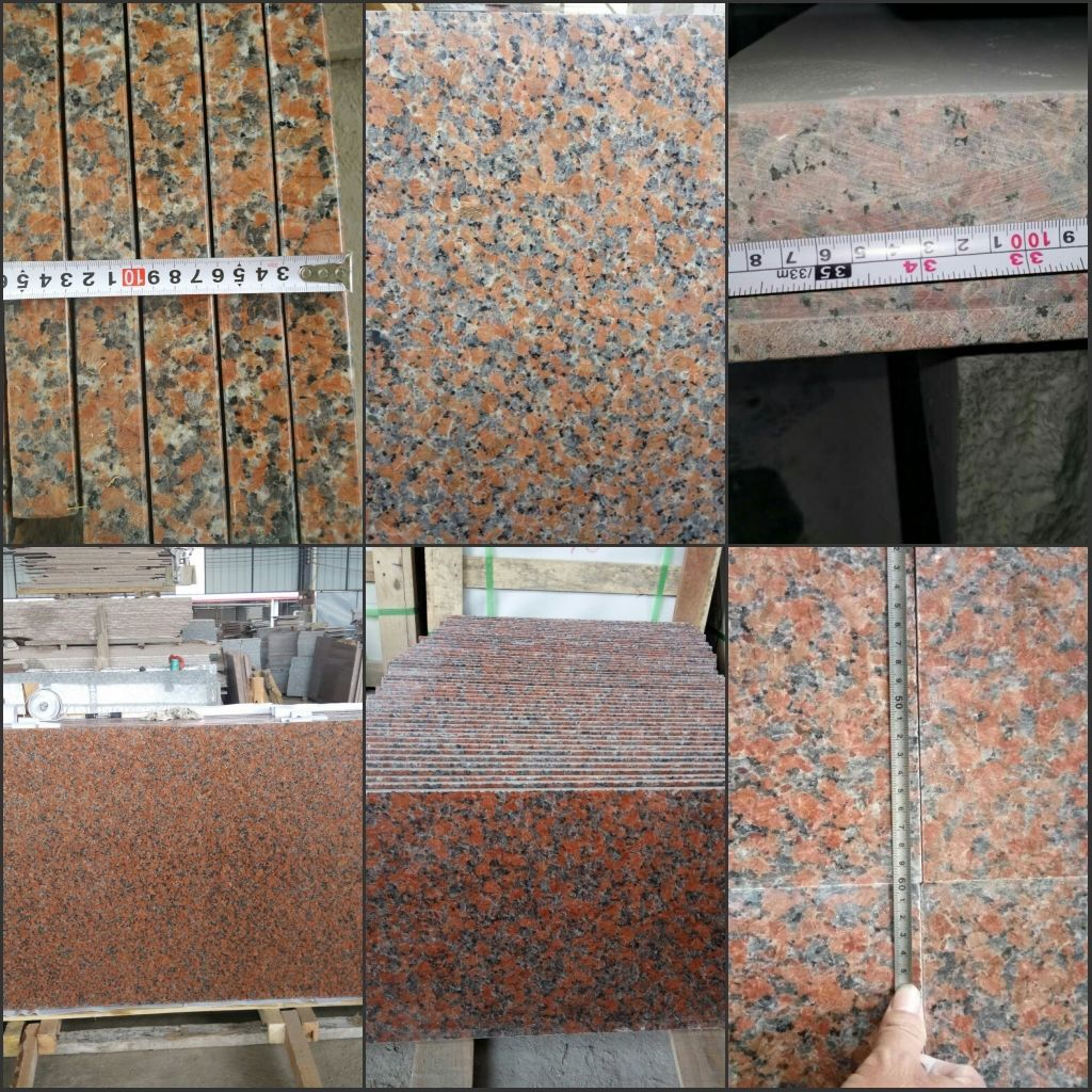 Chinese Red Granite G562 Maple Red Floor Tilesslabs From China